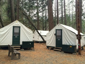 Curry village tents