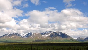 Drive to Denali