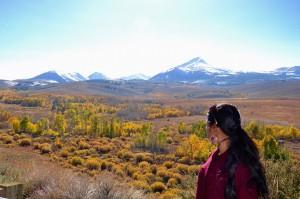 Autumn colours before the Mono lake viewpoint