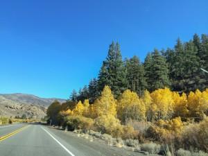 Somewhere on US 395