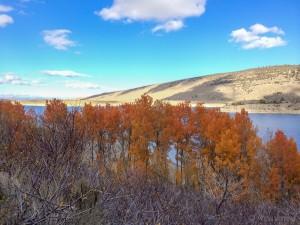 Somewhere near Grant lake