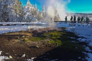 Lower geyser basin