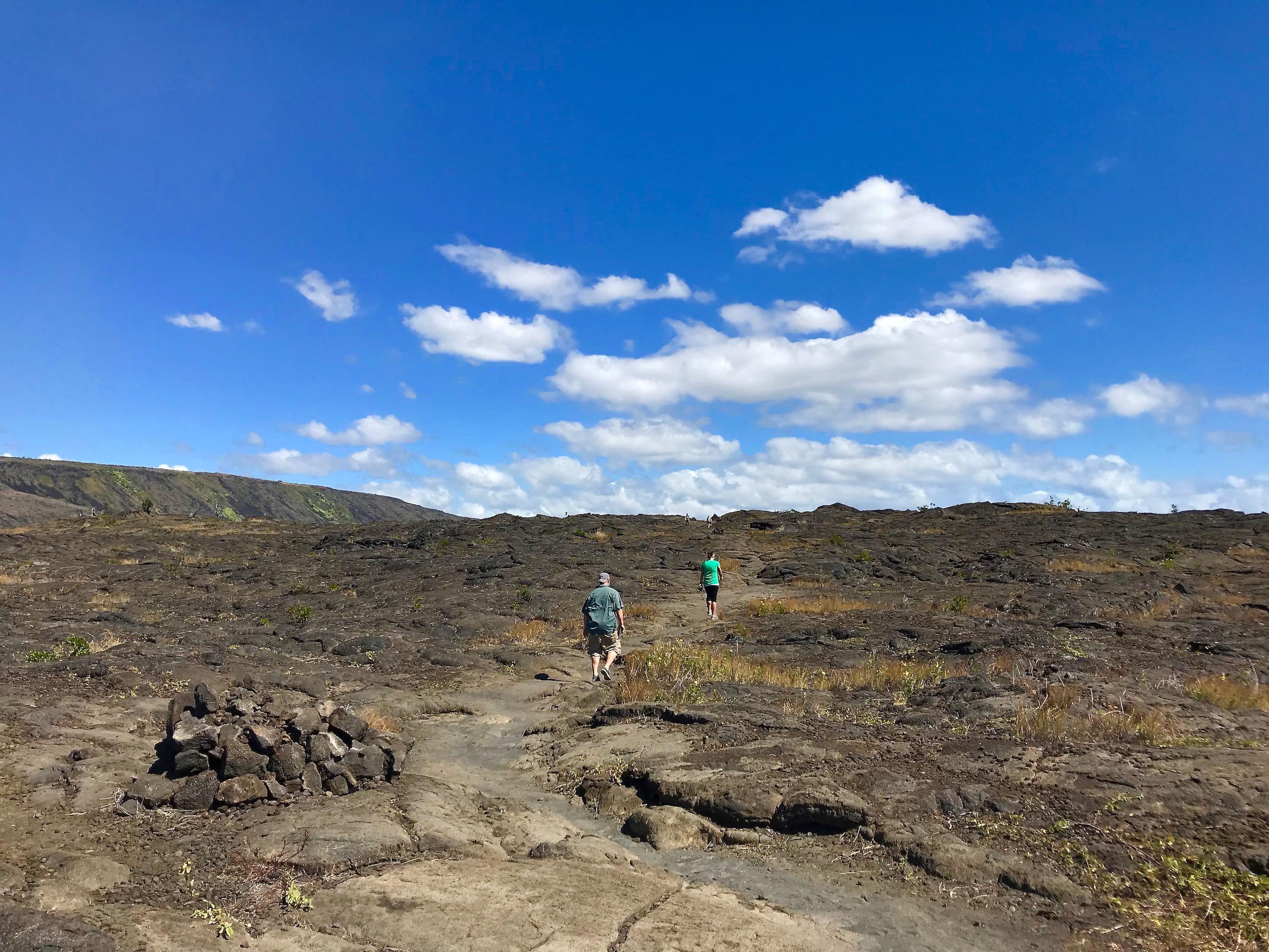 Pu'u Loa Petroglyphs trail